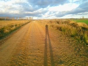De paseo por Melgar #1